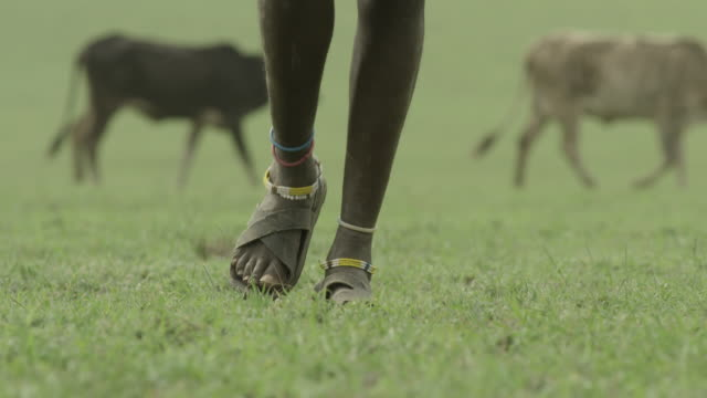 Anonymous shot of a Masai man walking across the Serengeti National Park.