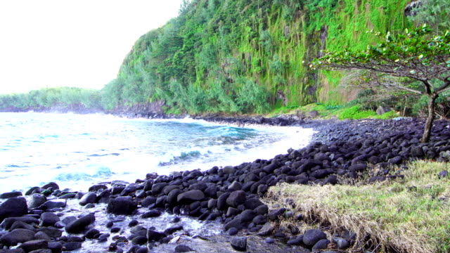 anse des cascades - reunion island - french overseas territory stock videos and b-roll footage