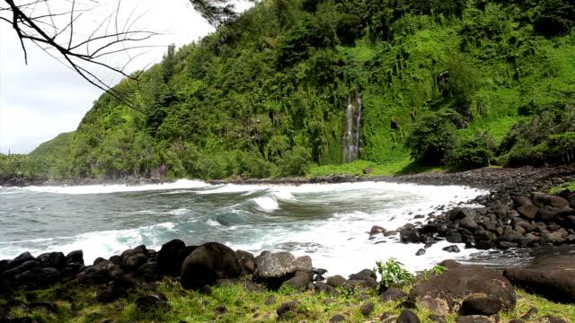 vídeos de stock, filmes e b-roll de l'anse des cascades - territórios ultramarinos franceses