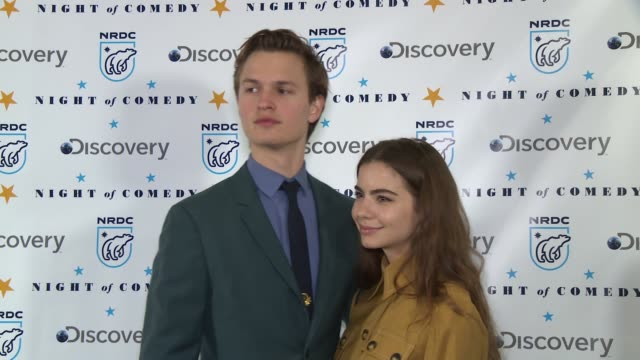 ansel elgort at the natural resources defense council presents night of comedy benefit hosted by seth meyers at new york historical society on april... - seth meyers stock videos and b-roll footage