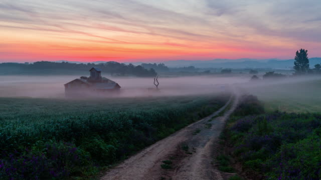 anseong farmland at sunrise / anseong-si, gyeonggi-do, south korea - コテージ点の映像素材/bロール
