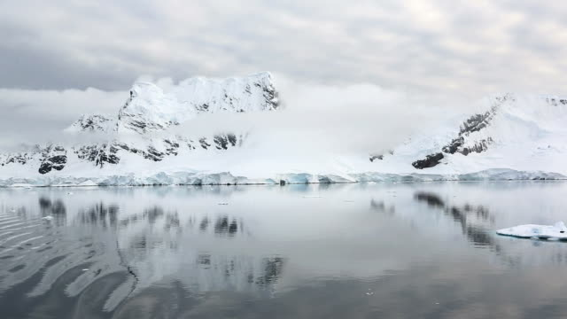 antarctic coast - ice sheet stock videos and b-roll footage