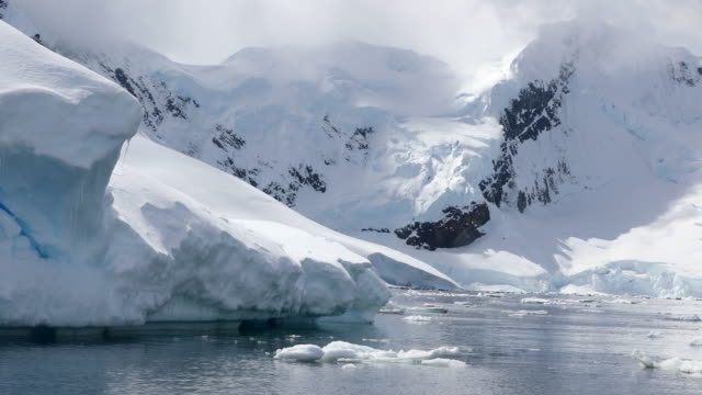 antarctic coastal scenery - antarctica stock videos and b-roll footage