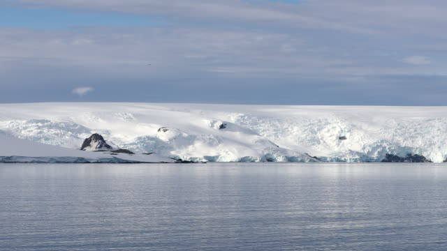 antarctic coastal scenery - water surface stock videos & royalty-free footage