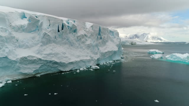 antarctic glacier calving face - antarctica iceberg stock videos & royalty-free footage