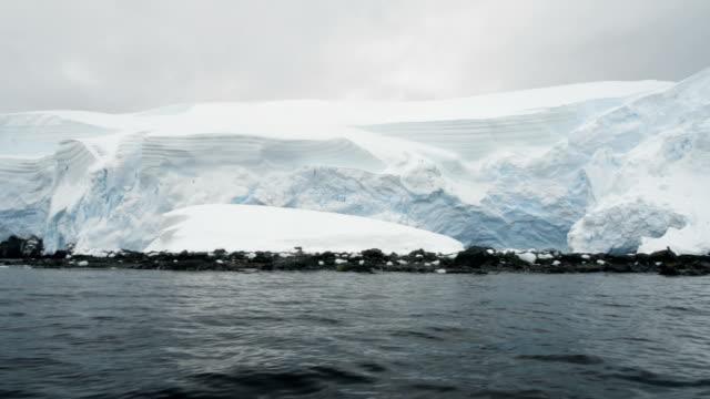 antarctic peninsula coast - antarctic ocean stock videos & royalty-free footage