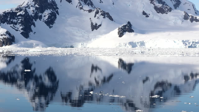 antarctic peninsula coastal landscape with reflections - water surface stock videos & royalty-free footage