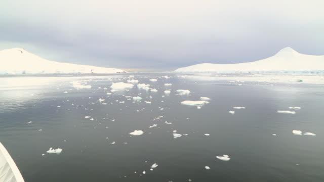 Antarctic peninsula, Gerlache Strait, the m/v Sea Spirit sailing amongst many small icebergs