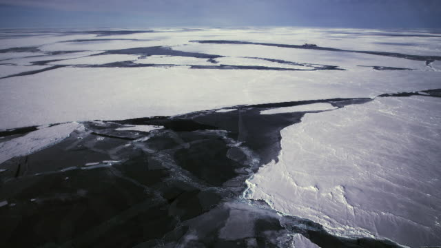 vídeos de stock, filmes e b-roll de antarctic sea ice - antártica