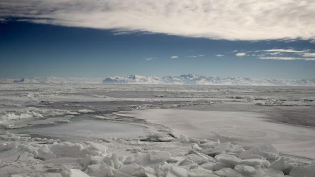 vídeos de stock e filmes b-roll de antarctic sea ice - clima polar