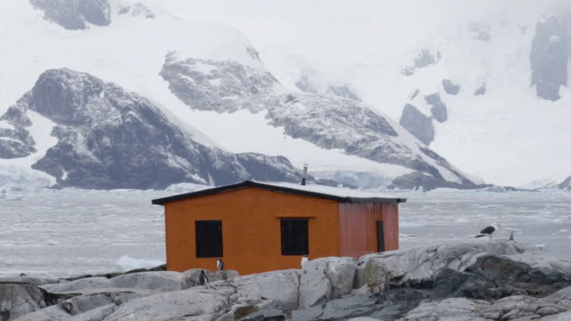 antarctic shelter in petermann island - polar stock videos & royalty-free footage