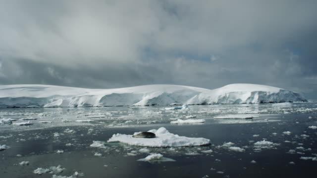 Antarctica, Glaciers, Ice
