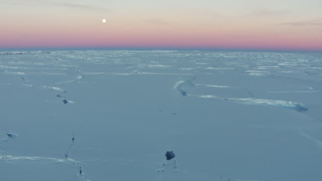 antarctica: ice landscape under twilight - antarktis stock-videos und b-roll-filmmaterial