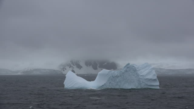 antarctica iceberg floats by fog covered coastline - ice floe stock videos & royalty-free footage