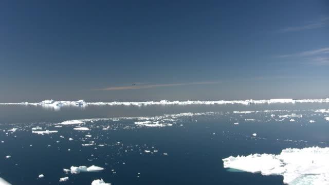 vidéos et rushes de antarctique icebergs drifting (hd 1080 - iceberg bloc de glace