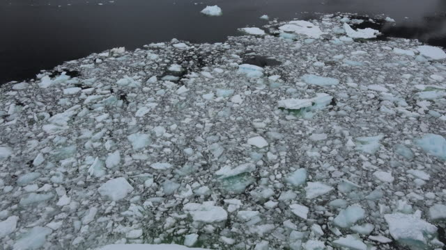 Antarctica Lemaire brash ice.mov