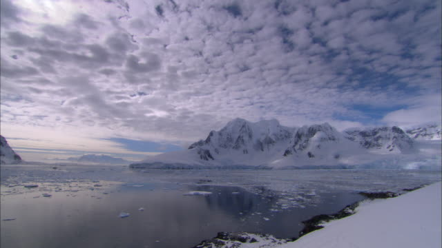 WS, PAN, Antarctica, Lemaire Channel