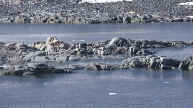 Antarctica Neumayer Channel rocks and sparkling water