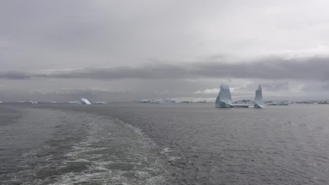 Antarctica wake in Palmer Archipelago