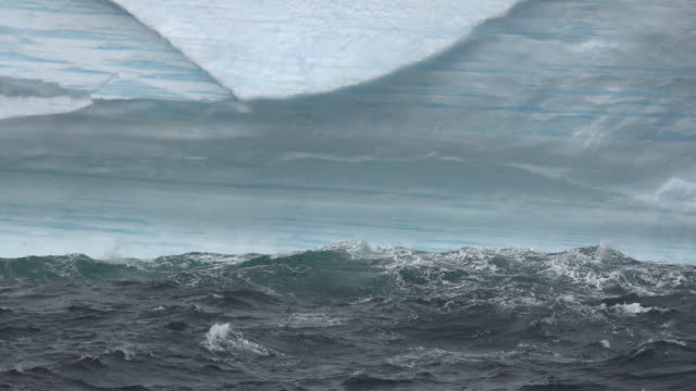 antarctica waves on iceberg - ice floe stock videos & royalty-free footage