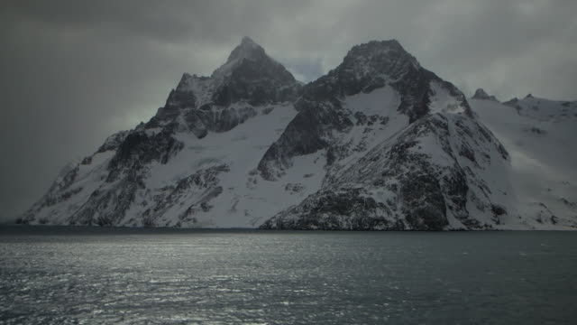 antarctica/south georgia - insel south georgia island stock-videos und b-roll-filmmaterial