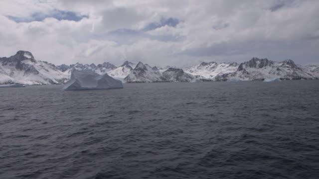 antarctica/south georgia - ernest shackleton stock videos & royalty-free footage