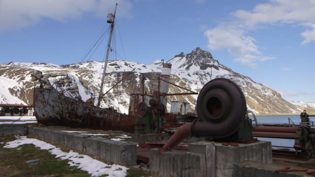 antarctica/south georgia - whaling stock videos & royalty-free footage
