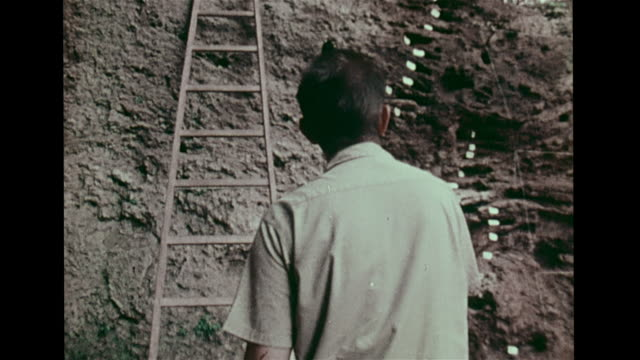 anthropologist arthur j. jelinek climbing ladder & entering cave excavation site in mount carmel, researchers excavating, standing on... - digging stock-videos und b-roll-filmmaterial