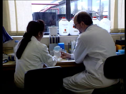 antibiotic fears science bureau clipreel seq two lab workers examining petri dish culture and discussing same - kommode stock-videos und b-roll-filmmaterial