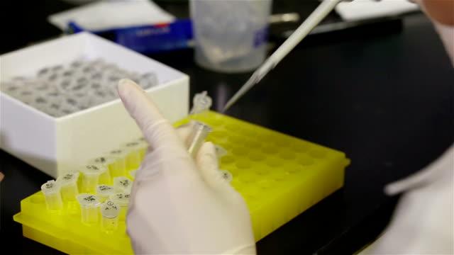 ELISA antibody selection.
