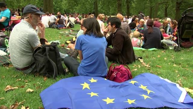 vídeos de stock, filmes e b-roll de antibrexit campaigners hold picnic in green park england london green park ext antibrexit campaigners in park eu flag next to antibrexit protesters... - parque green