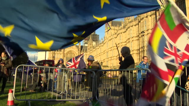AntiBrexit demonstrators protesting outside the Houses of Parliament