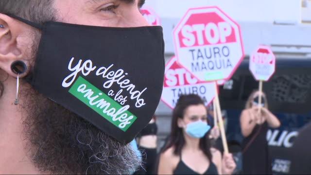 anti-bullfighting protesters at madrid against bullfights. - hooved animal stock videos & royalty-free footage