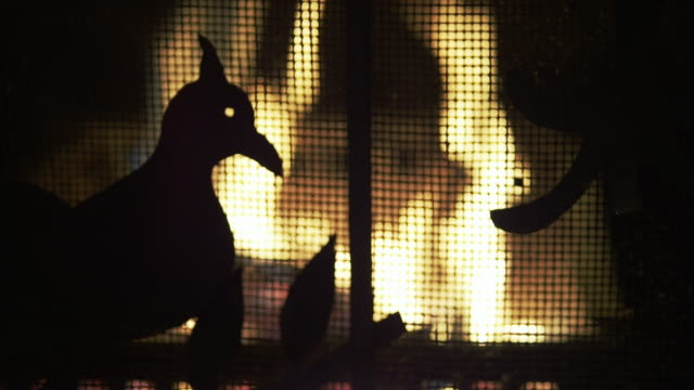 antique fire screen and fire in soft focus - animal representation stock videos & royalty-free footage
