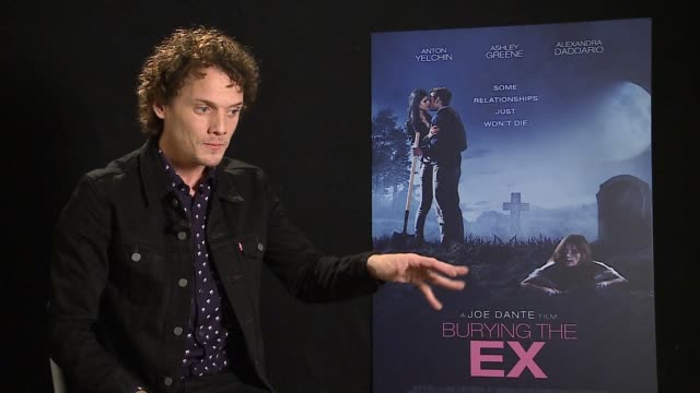 anton yelchin of the appeal of the film, his love for b movies and being in venice at 'burying the ex' interviews - 71st venice international film... - 第71回ベネチア国際映画祭点の映像素材/bロール