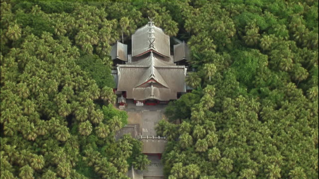 aoshima jinja in the middle of a forest. - shrine stock videos & royalty-free footage