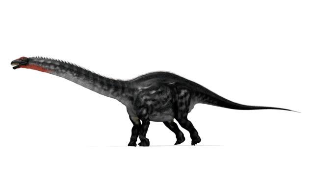 apatosaurus dinosaur running - jurassic stock videos & royalty-free footage