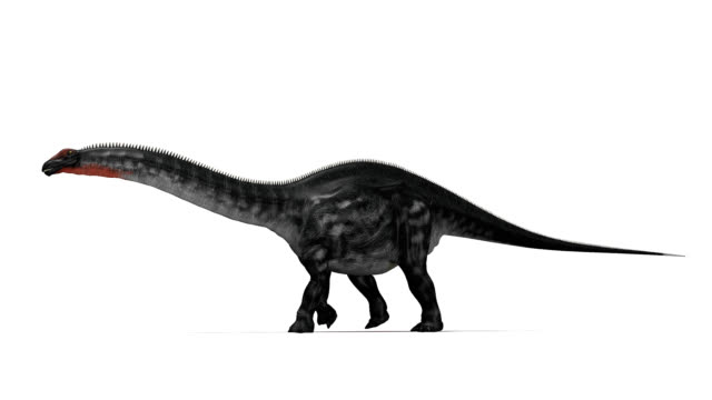 apatosaurus dinosaur walking - jurassic stock videos & royalty-free footage