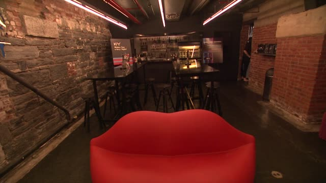 aphrodisiac lounge at ky brand celebrates the launch of the big fun sexy sex book with coauthors lisa rinna and dr ian kerner at the museum of sex on... - lisa rinna stock videos and b-roll footage