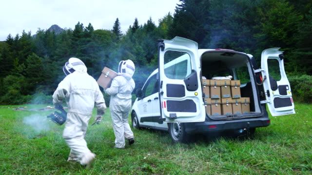 vídeos y material grabado en eventos de stock de apiculture activity in pirineos - grupo mediano de objetos