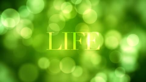 visas 'liv' text och upplösning efter ett tag med rörligt gröna glitter ljus, green oskärpa reflektioner på loopable bokeh bakgrund. hälsosamt liv, våren, skog, önsketänkande konceptet video - välbefinnande bildbanksvideor och videomaterial från bakom kulisserna