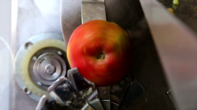 apple slicing machine - food processing plant stock videos and b-roll footage