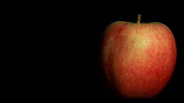 vidéos et rushes de apple - pomme