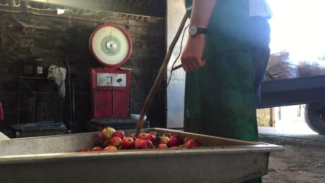 apples are pressed at roger wilkins' wilkins cider farm to make cider in the village of mudgley on october 2, 2015 in somerset, england. the 67... - wet wet wet stock videos & royalty-free footage