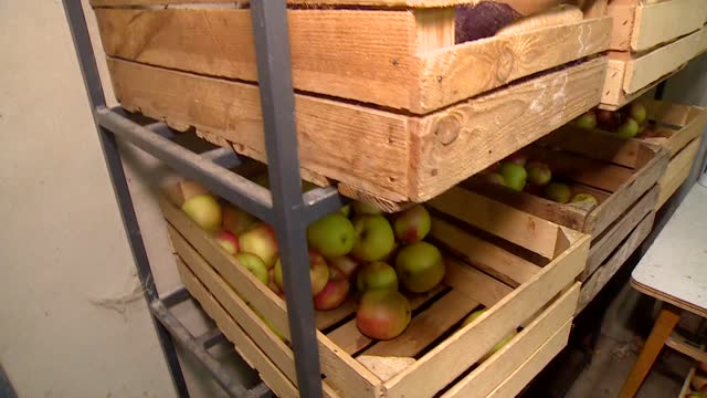 apples in the chests - compartment stock videos & royalty-free footage