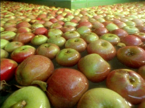 t/l - cu apples moving through water in processing factory, england - apple fruit stock videos & royalty-free footage