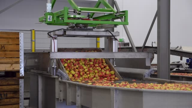 apples on a factory production line - agricultural equipment stock videos & royalty-free footage