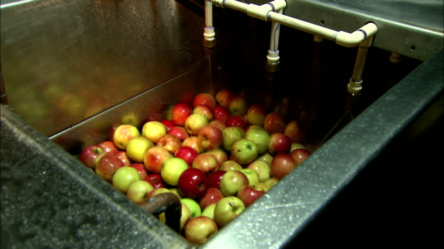 apples vibrate in a metal tub. - toffee stock videos & royalty-free footage