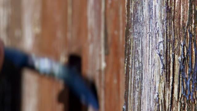 applying varnish to wood - pinsel stock-videos und b-roll-filmmaterial