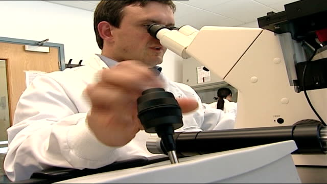 stockvideo's en b-roll-footage met hfea approve human/animal embryo creation for research location unknown int scientist lyle armstrong in laboratory using microscope - animal creation